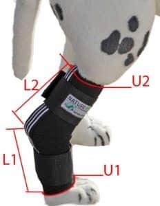 Sprunggelenk-Bandage-Maße