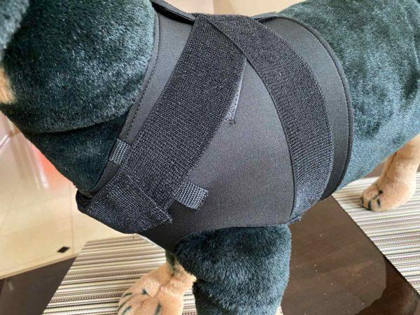 Schulter Bandage für Hunde